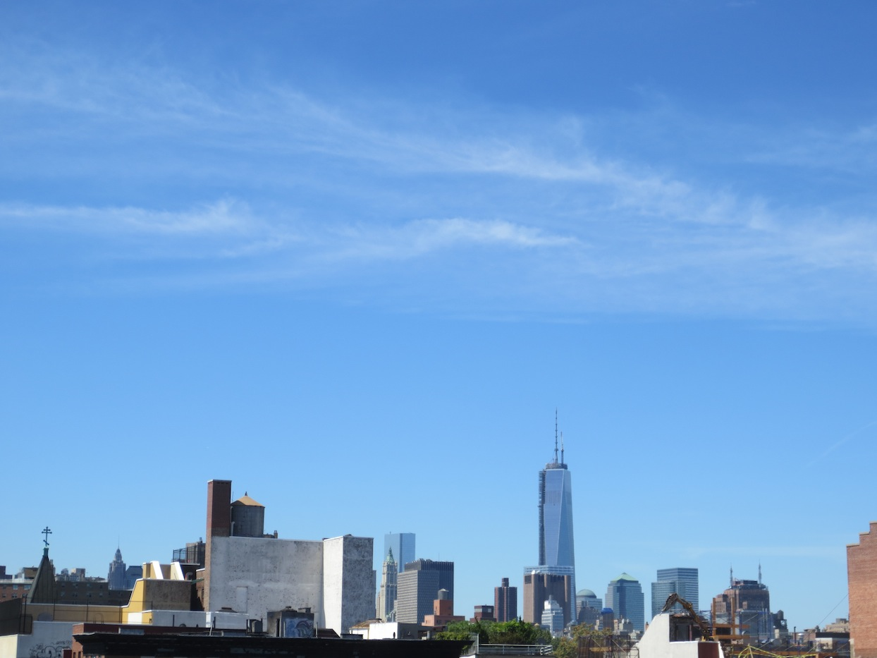 The New York City skyline view from the East Village.
